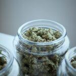 Negozio cannabis
